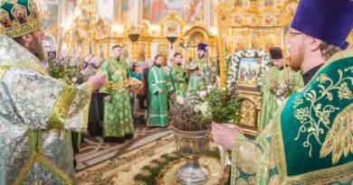 В праздник Вербного воскресенья митр. Викторин совершил богослужения в кафедральном храме