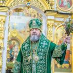 Архипастырское служение в праздник Входа Господня в Иерусалим